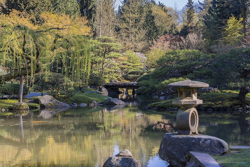 Autumn, Japanese Garden, Leaf Peeping, Pond, Garden