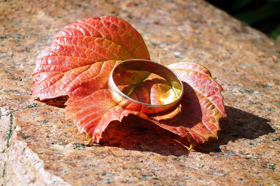 Wedding Ring, Ring, Leaf, Autumn Leaf, Gold, Fall Leaf