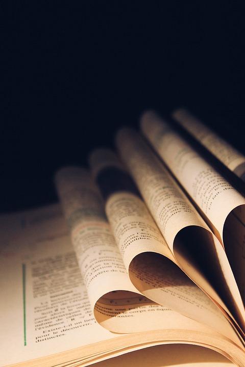 Leaf, Symbol, Book, Open, Torsion, Reading, Science