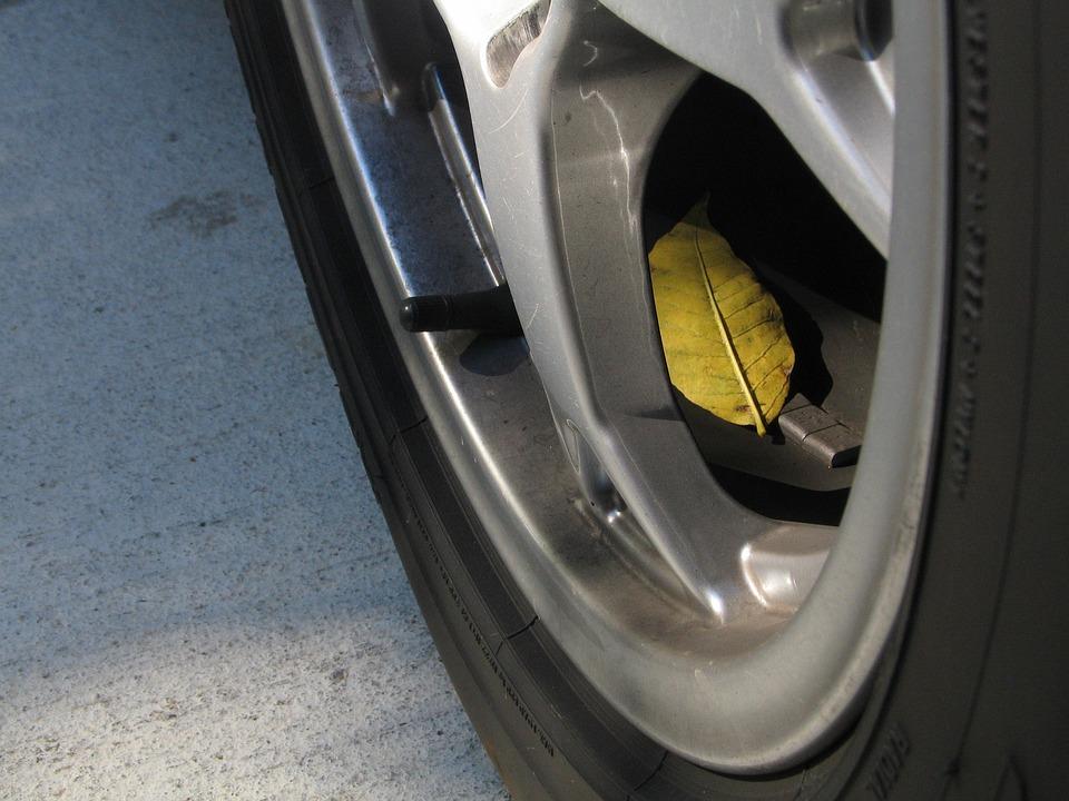 Tire, Automotive, Leaf, Fall, Maintenance, Auto, Wheel
