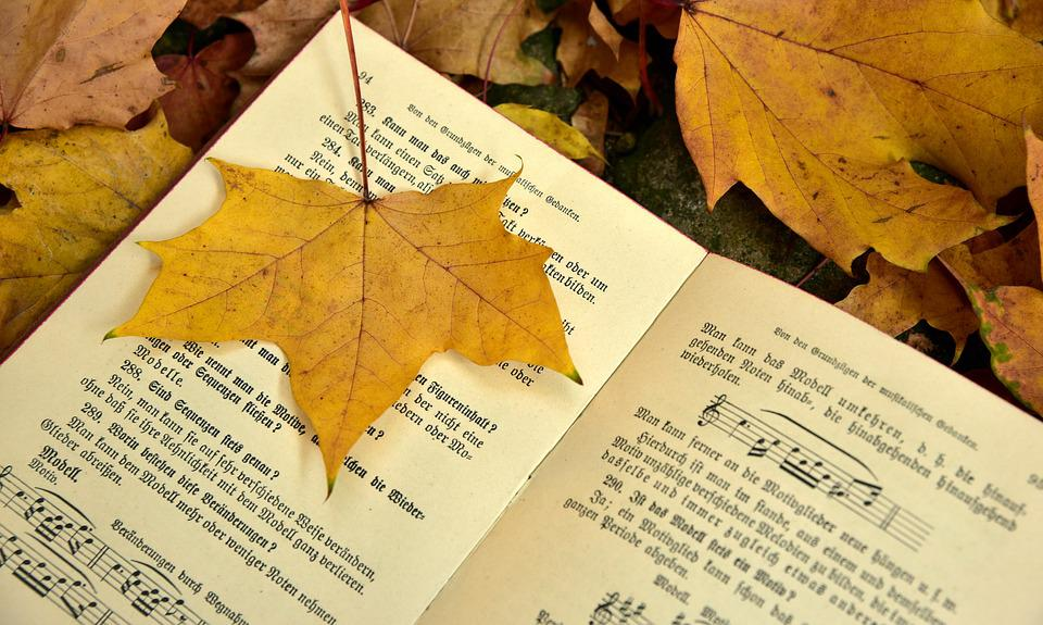 Book, Autumn, Leaf, Leaves, Old, Transient, Music