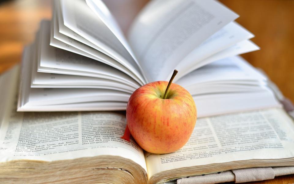 Book, Read, Bible, Literature, Learn, Knowledge