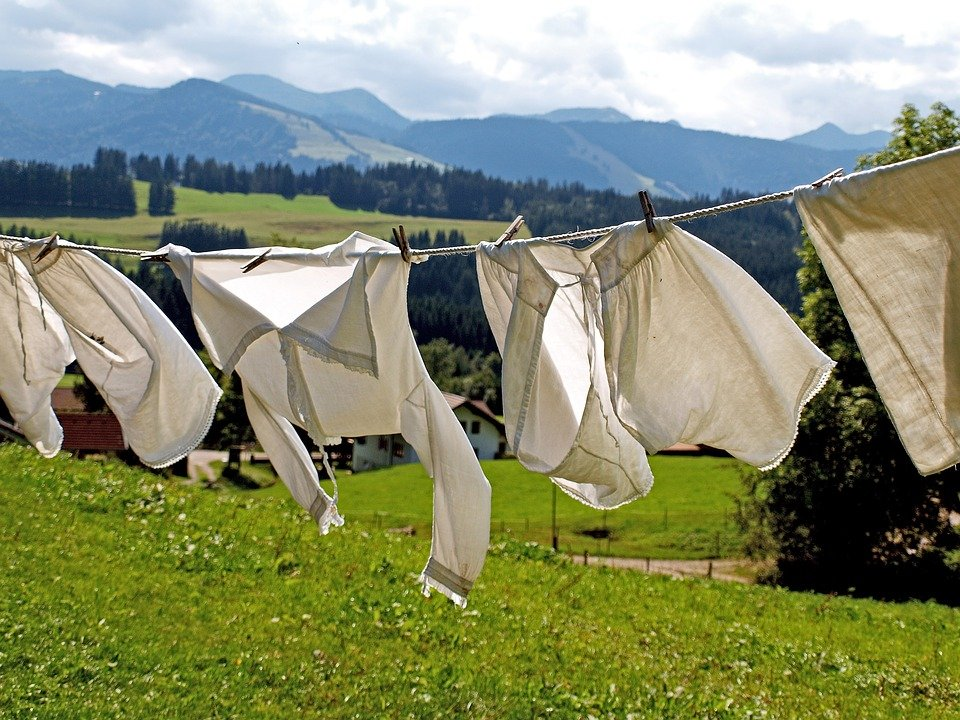 Laundry, Dry, Dry Laundry, Hang, Washed, Clip, Leash
