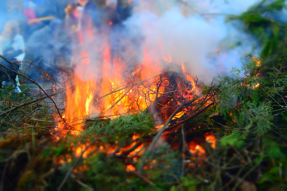 Easter Fire, Branches, Leaves, Fire, Green, Easter