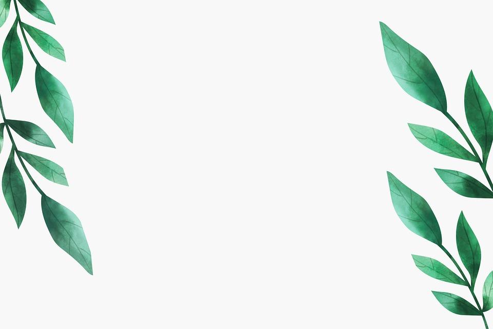 Leaves, Decor, Digital Art, Copy Space