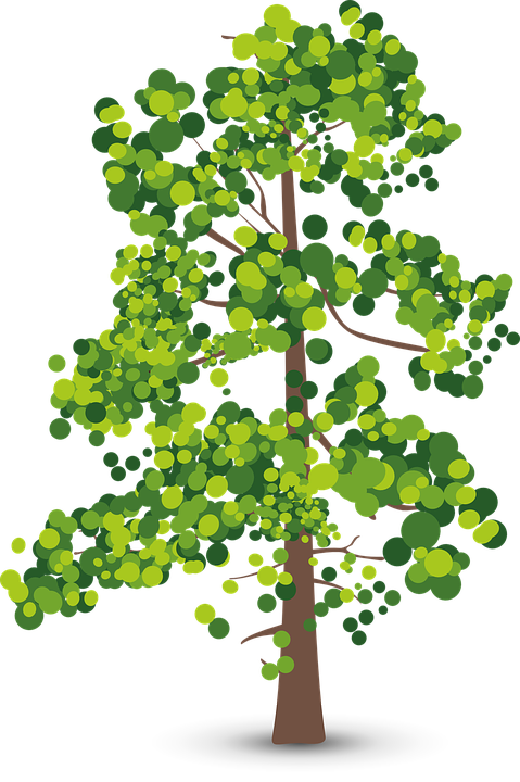 Tree, Leaves, Trunk, Summer, Green, Spring, Nature