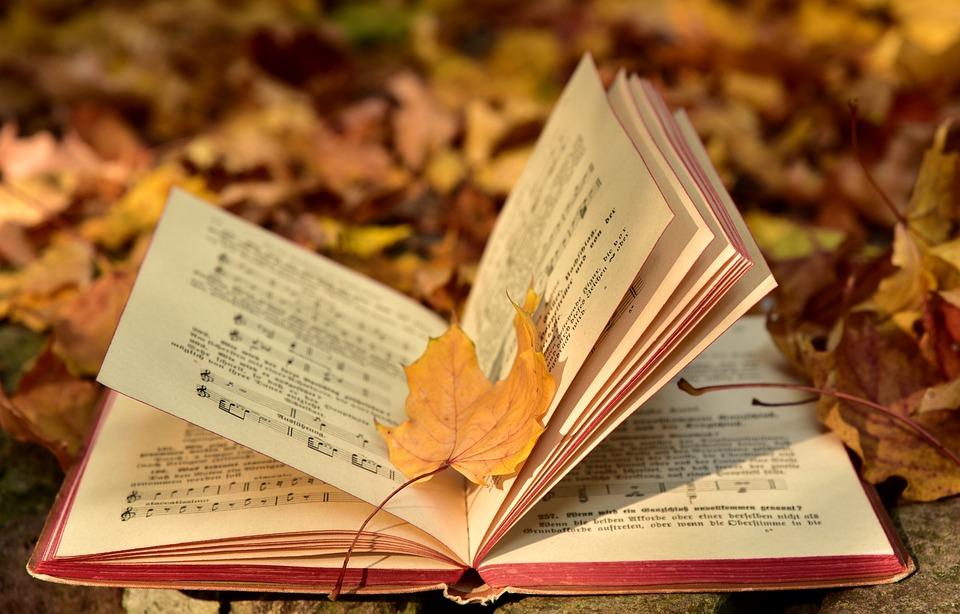 Book, Autumn, Leaf, Leaves, Old, Transient, Music