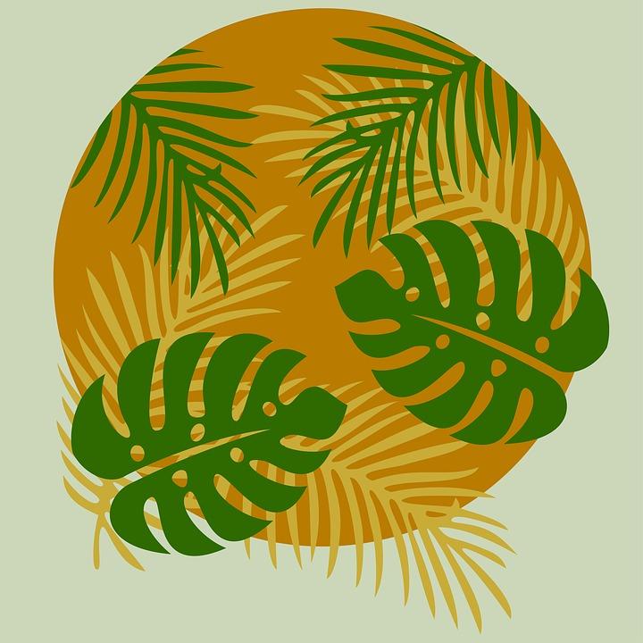 Leaf, Leaves, Texture