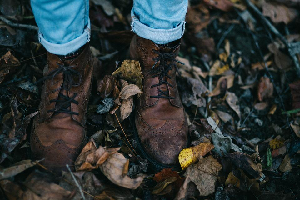 Fall, Leather Shoes, Feet, Footwear, Leaves, Shoes