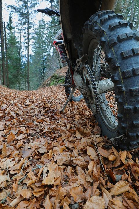 Motocross, Motorcycle, Forest, Enduro, Cross, Leaves