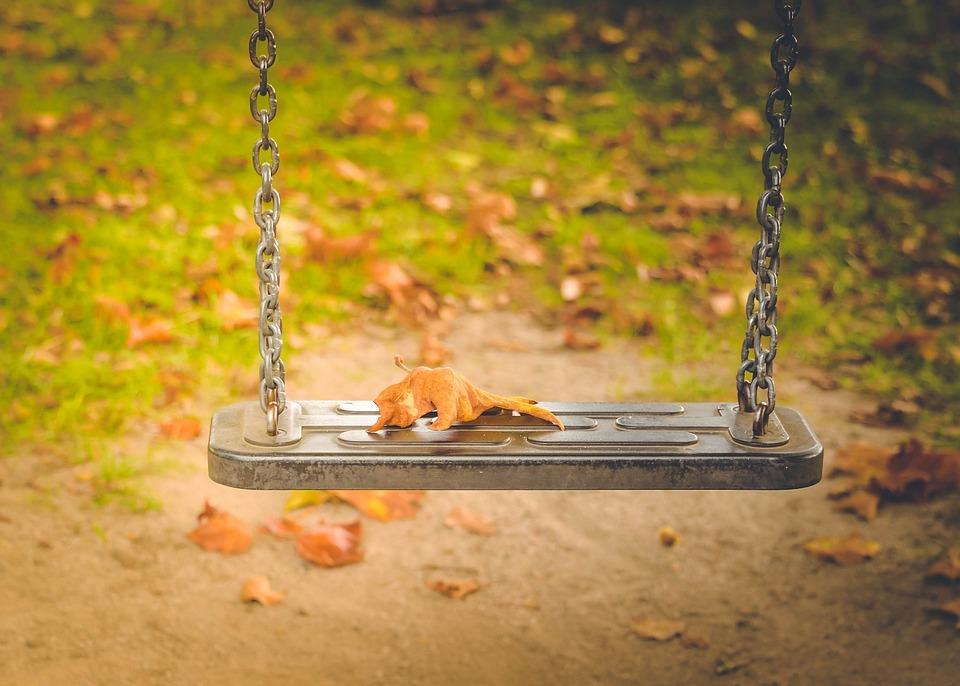 Autumn, Green, Nature, Forest, Landscape, Leaves, Fresh