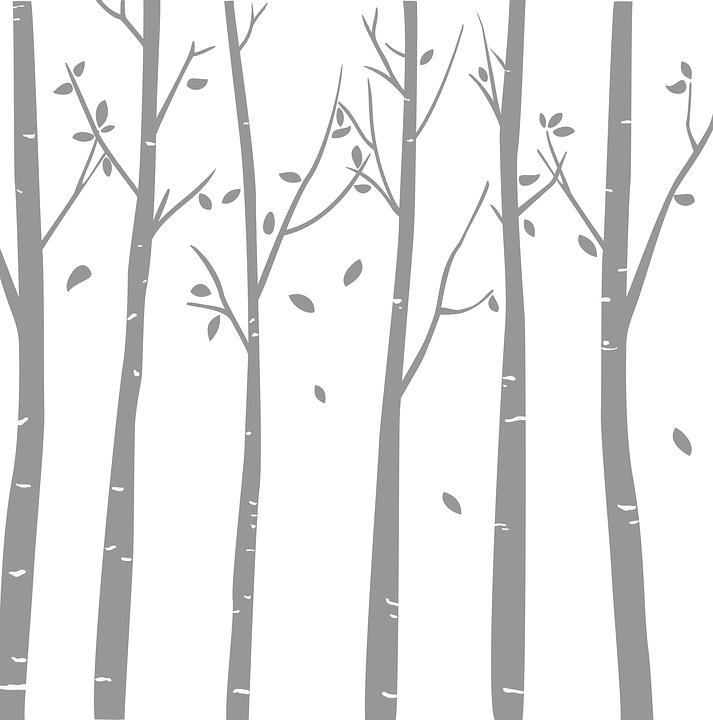Arboletes, Trees, Leaves, Bamboo