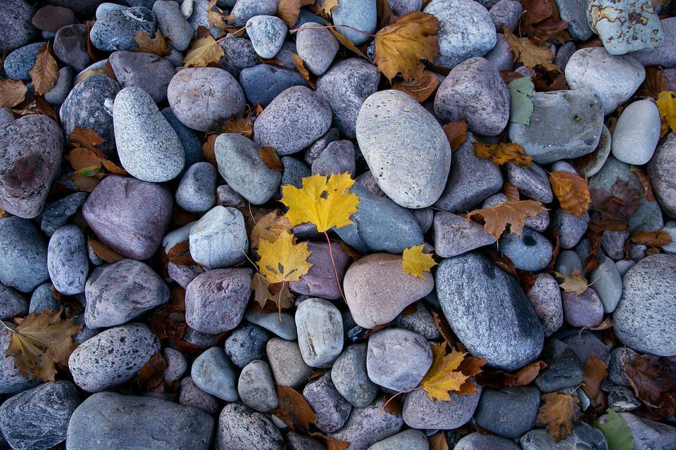 Stones, Beach, Stone Beach, Autumn, Leaves, Water