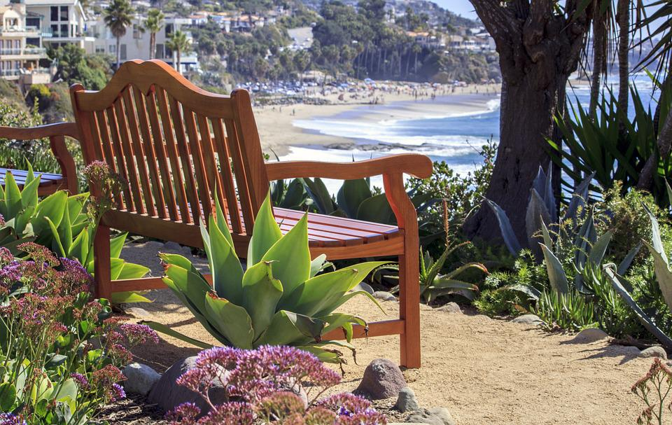 Bench, Relax, Sunny, Beach, Park, Outdoors, Leisure