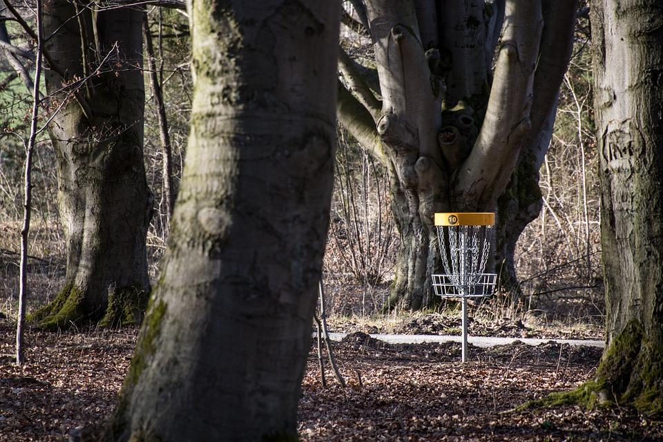 Sport, Disc Golf, Frisbee, Leisure, Disc Golf Basket