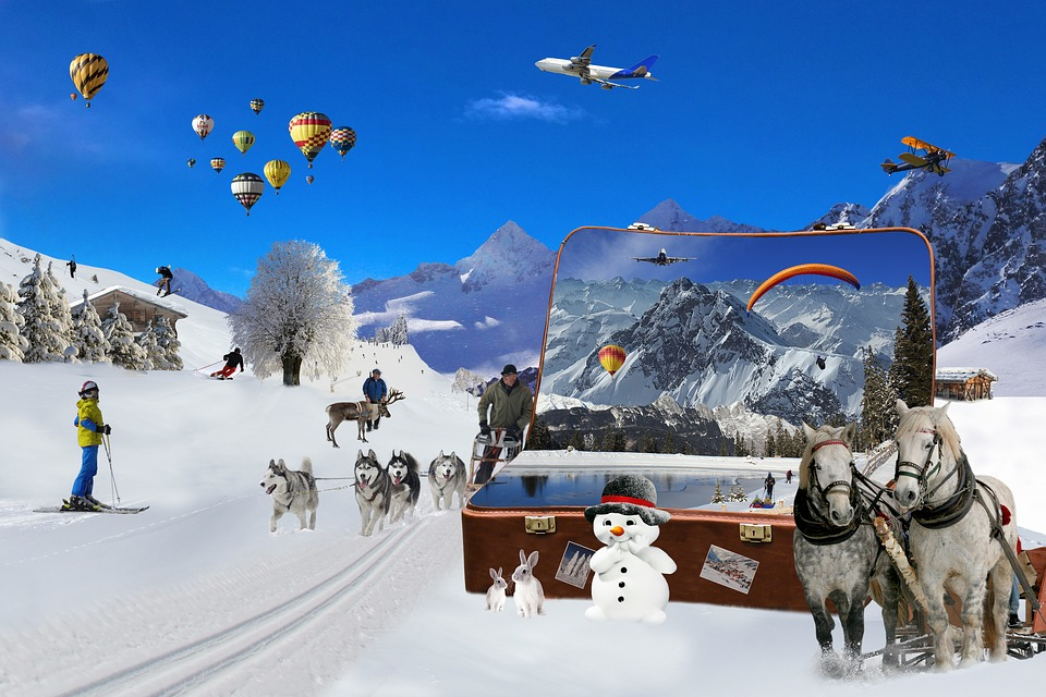 Holiday, Leisure, Snow, Winter, Cold, Mountain, Luggage
