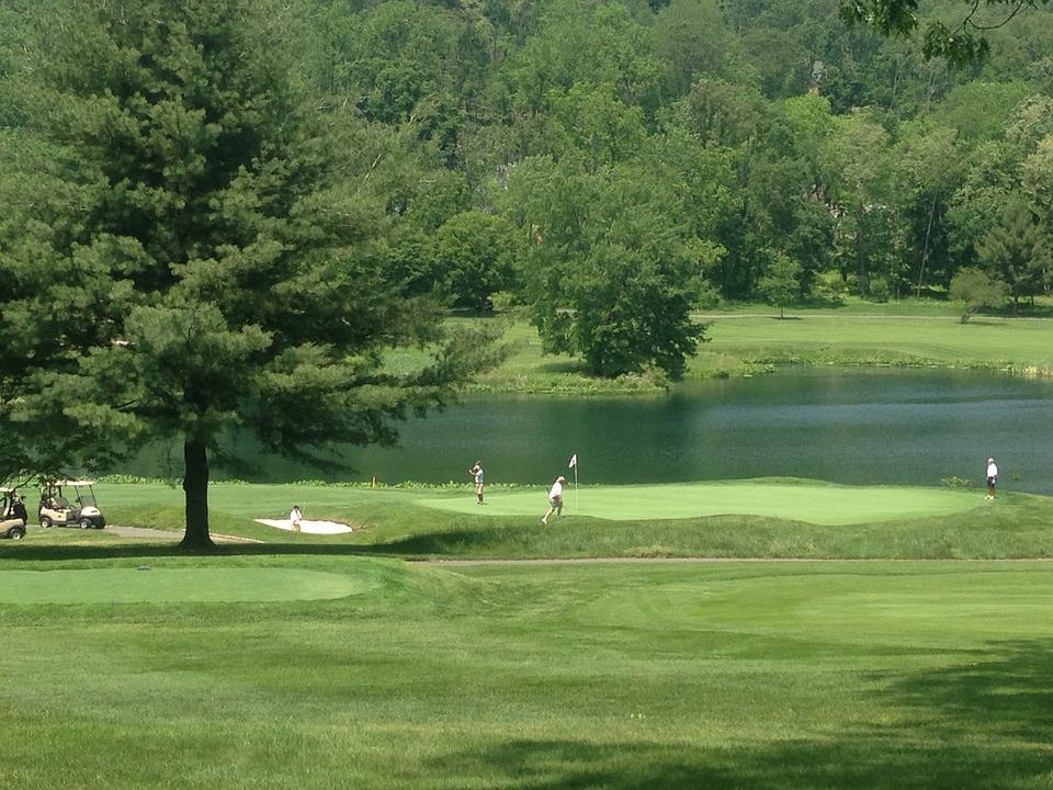 Golf, Course, Tee, Golfing, Sport, Grass, Game, Leisure