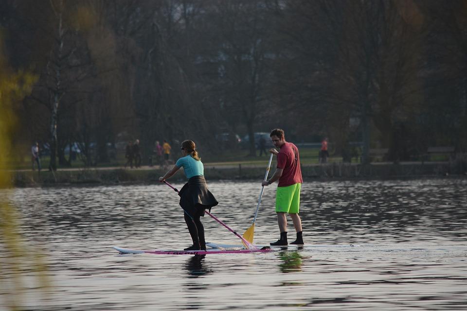 Sport, Leisure, Paddle, Alster, Hamburg, Summer