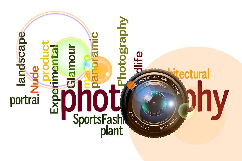 Photography, Camera, Photograph, Lens, Nature, Photo