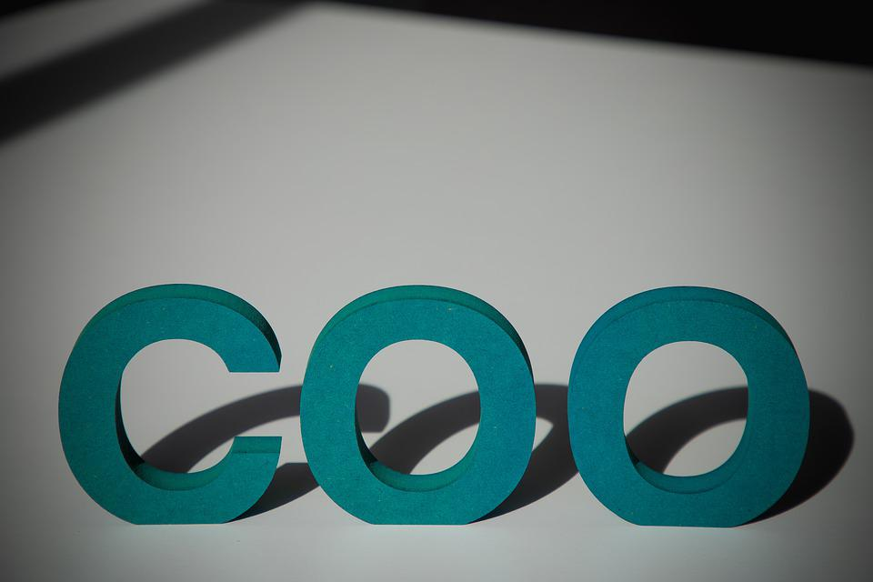 Coo, Letters, Uppercase Letters, Word, Typography