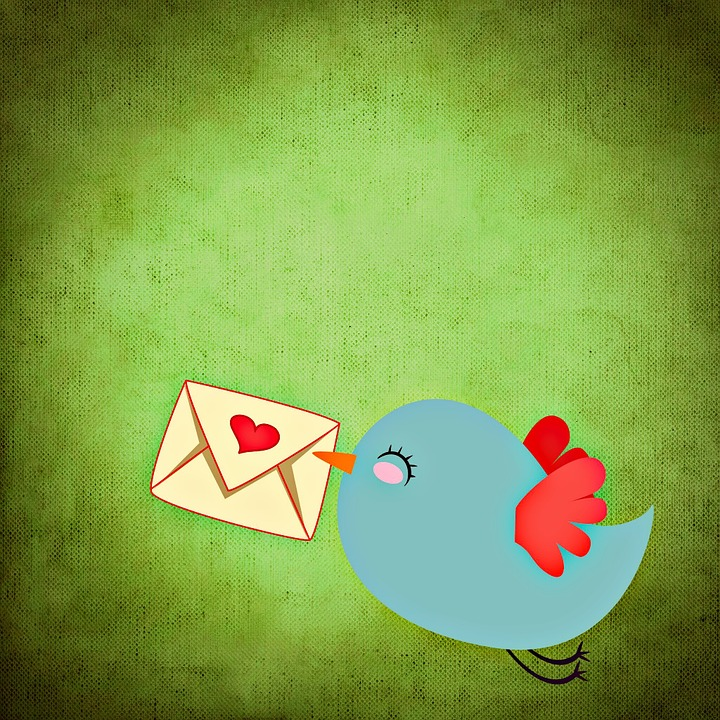 Bird, Colorful, Funny, Background, Letters, Love