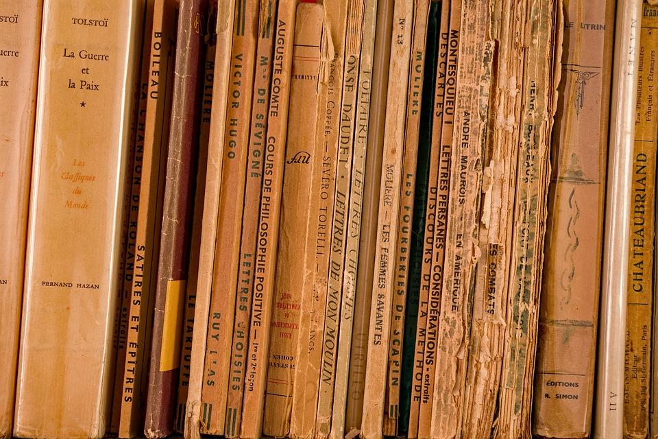 Literature, Bookcase, Library, Wisdom, Book, Reading