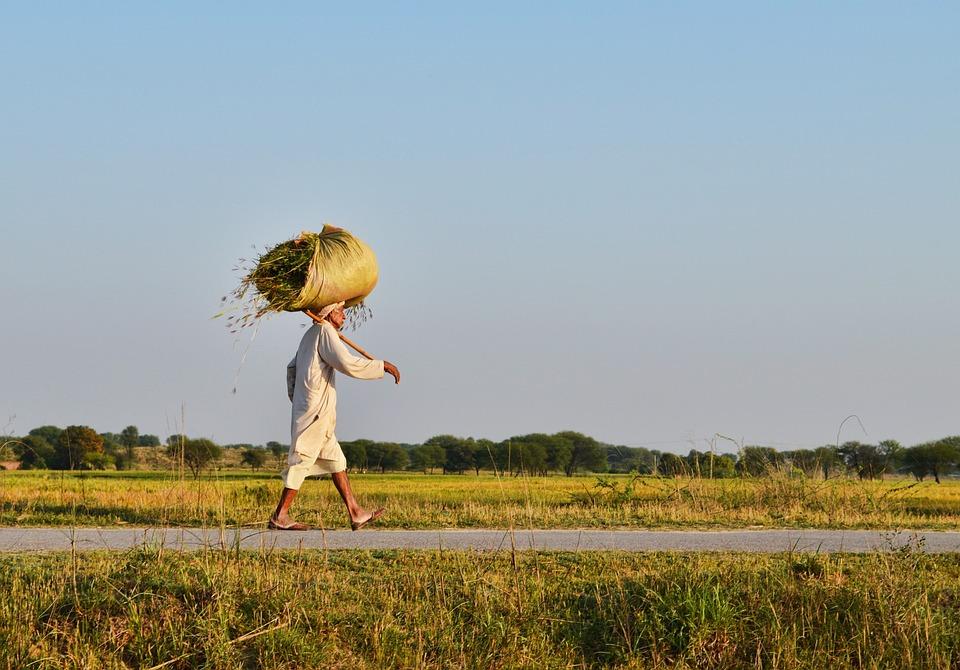Rural Beauty, Village Life, Village, Rural, Life