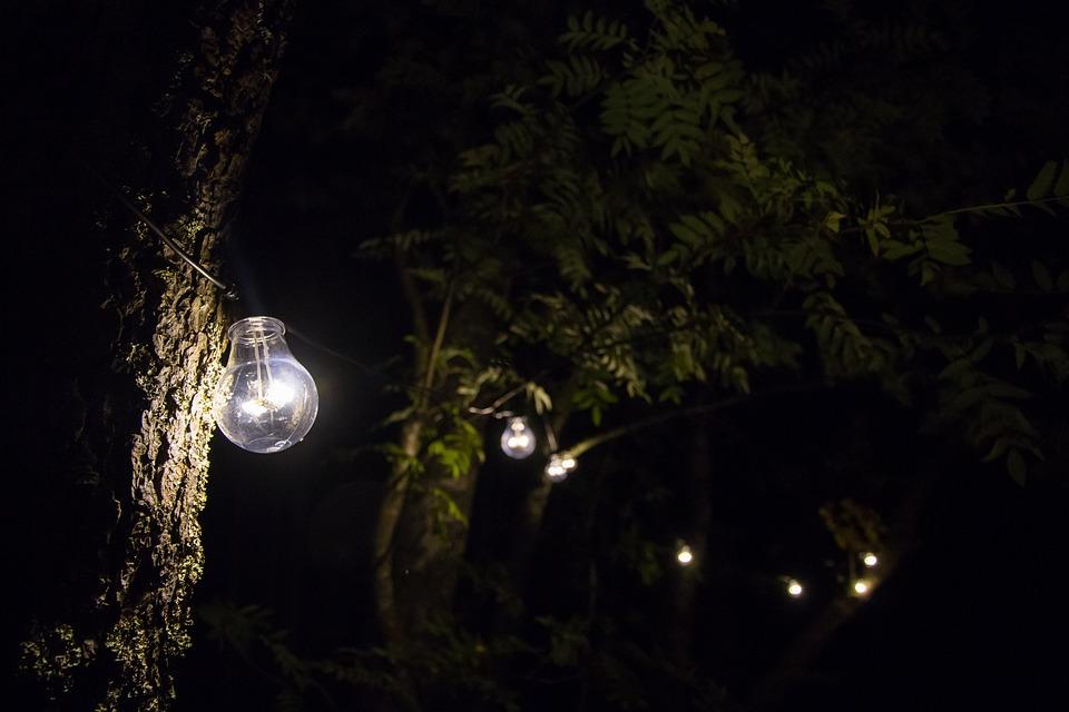 Light, Lamp, Light Bulb, Energy, Lighting, Garden, Bulb