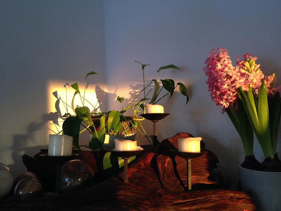 Hyacinth, Stone Ball, Candle, Light Effect, Log