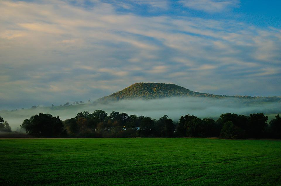Landscape, Fog, Morning, Sunshine, Mist, Forest, Light