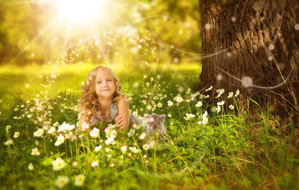 Girls, Cat, Tree, Sunshine, Light, Grassland, Flower