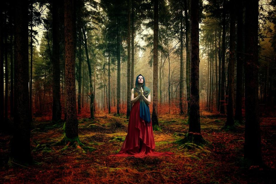 Tree, Wood, Secret, Nature, Landscape, Human, Light