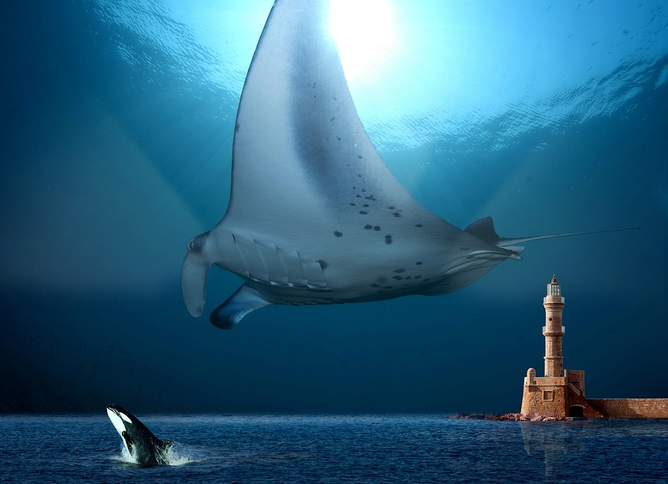 Water World, Underwater, Rays, Orka, Lighthouse, Glow
