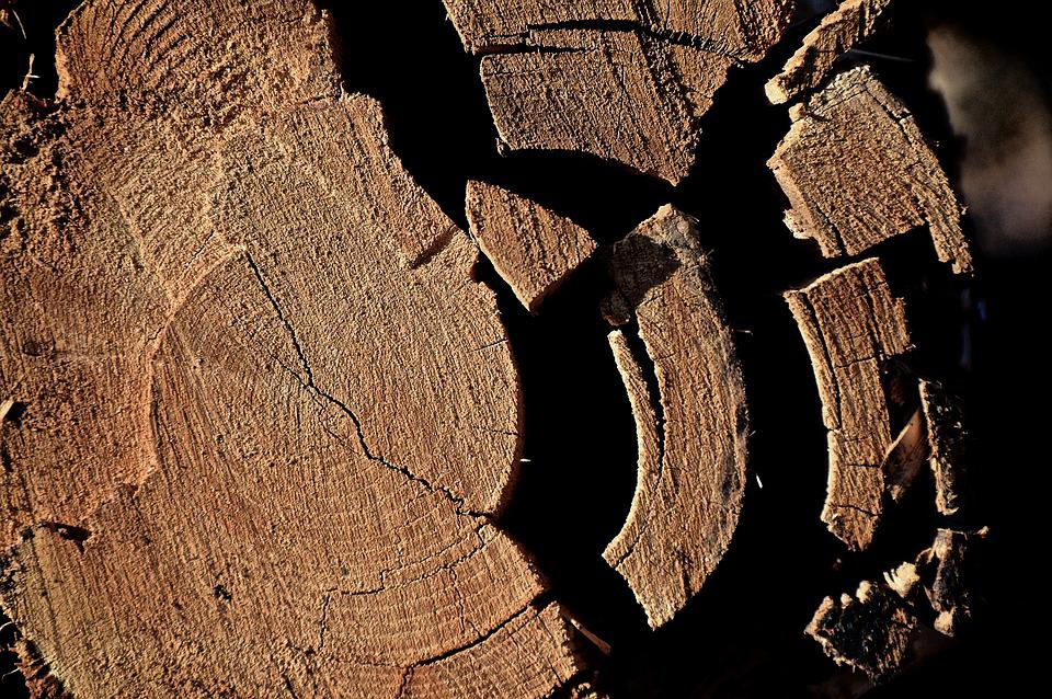 Log, Tribe, Wood, Like, Fragmented, Nature, Strains