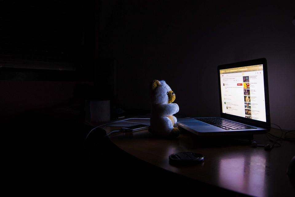 Bear, Computer, Night, Lilac, Dark, Room, Busted