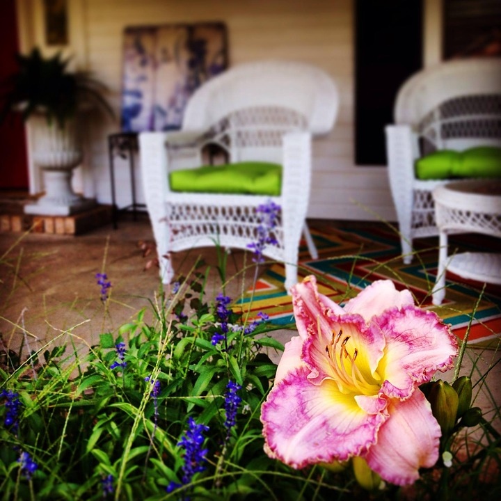 Porch, Lily, Front Porch, Flower, Garden, Home