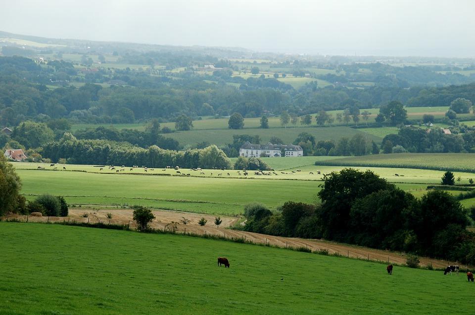 Landscape, Field, Nature, Panoramic, Castle, Limburg