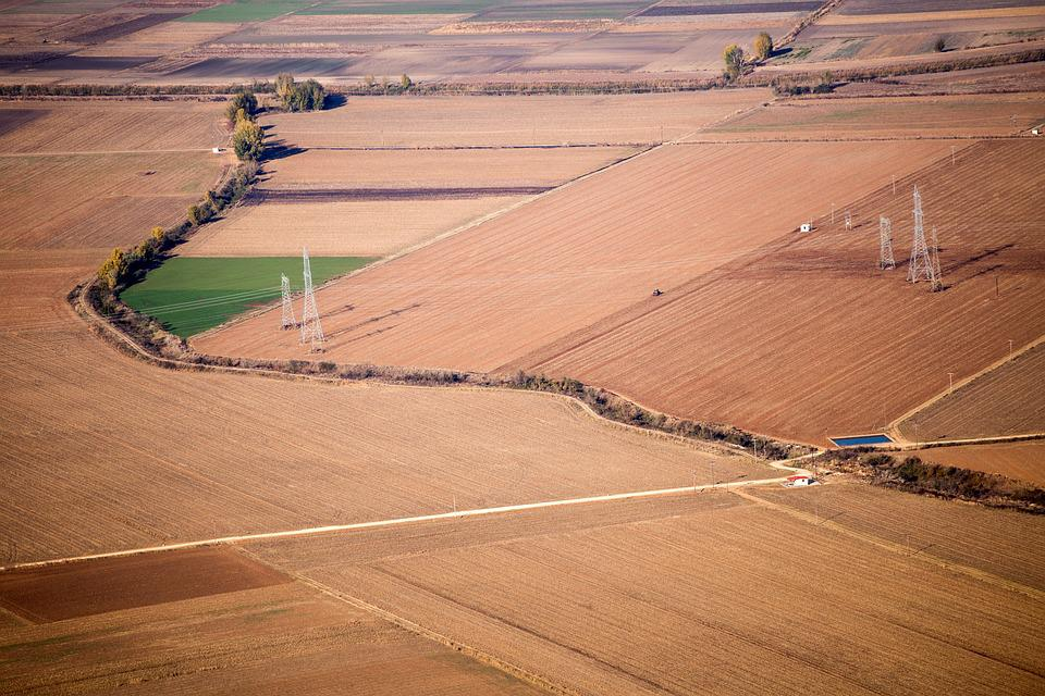 Autumn, Season, Brown, Green, Field, Lines, Activities
