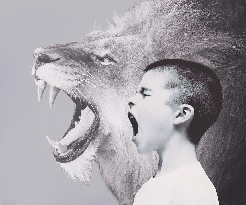 Child, Boy, Lion, Predator, Roar, Scream, Friendship