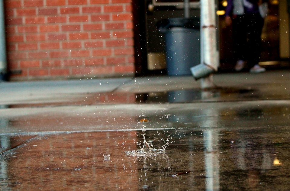 Water, Rain, Wet, Drop, Nature, Liquid, Pattern, Blue