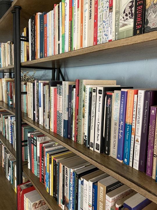 Books, Shelf, Library, Bookshelf, Literature, Novel
