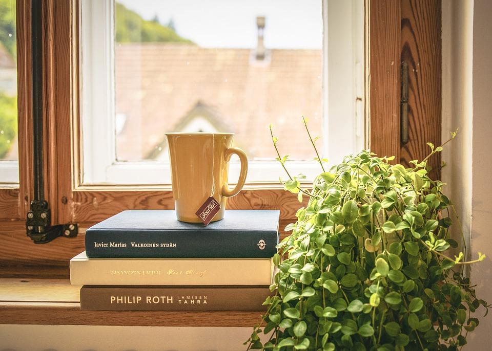 Book, Read, Tee, Literature, Window Sill, Houseplant