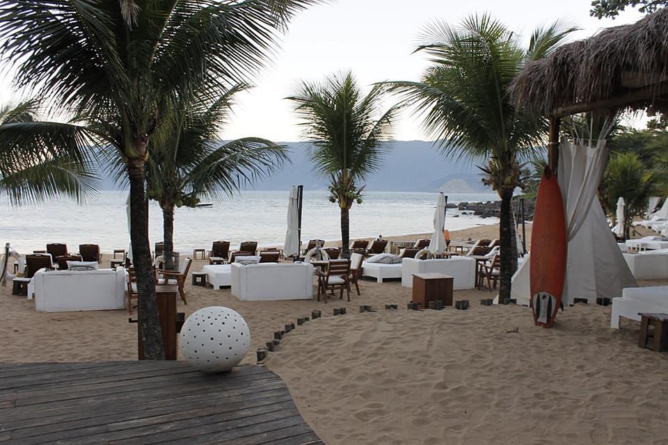 Beach, Coconut Trees, Mar, Beira Mar, Litoral, Holidays