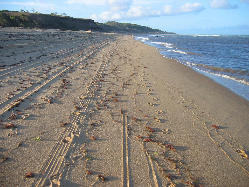 Sagi, Rn, Litoral, Deserted Beach, Buggy, Loneliness