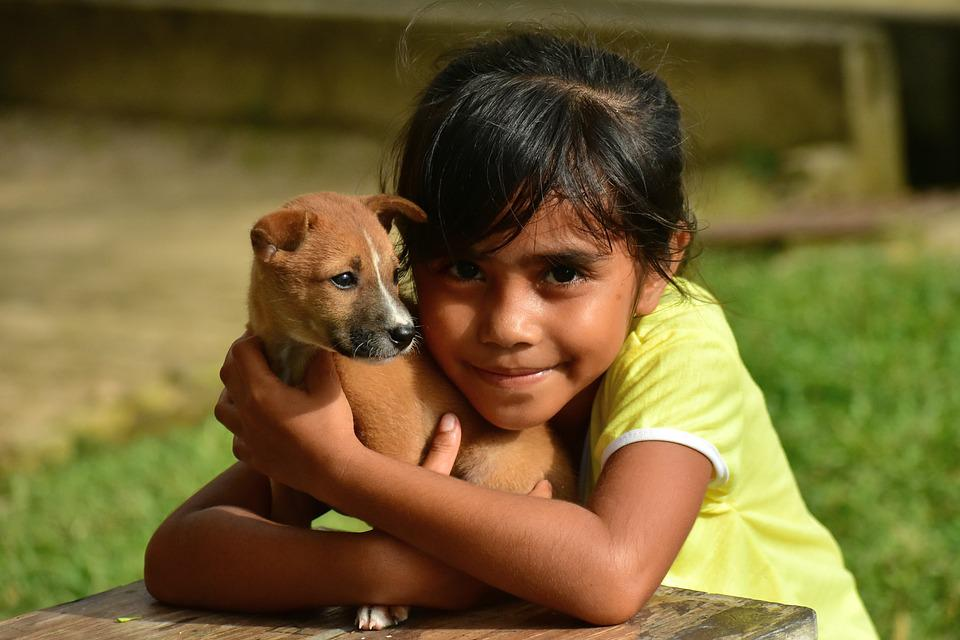 Puppy, Little Girl, Hug, Cute, People, Outdoors, Child