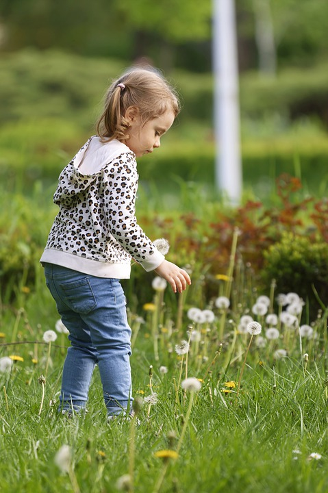 Child, Girl, Flowers, Little Girl, Kid, Playing, Field