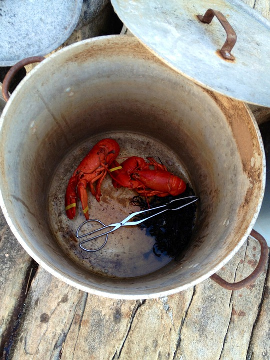 Lobster, Lobster Pot, Maine, Pot, Lobsters, Pots
