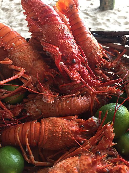 Lobsters, The Fruit Of The Sea, Food