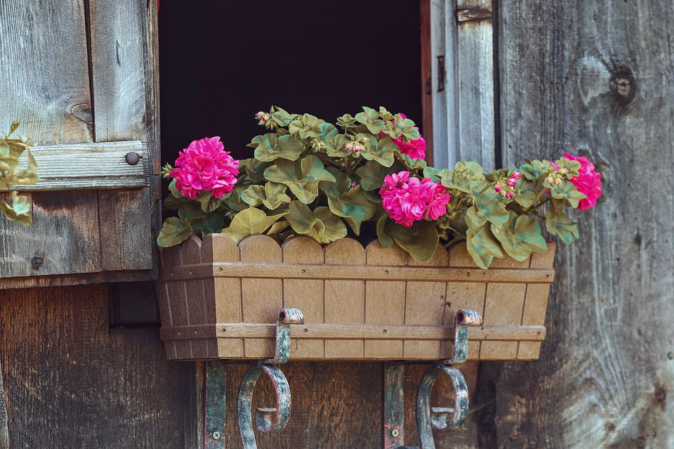 Flower Box, Floral Decorations, Window, Log Cabin