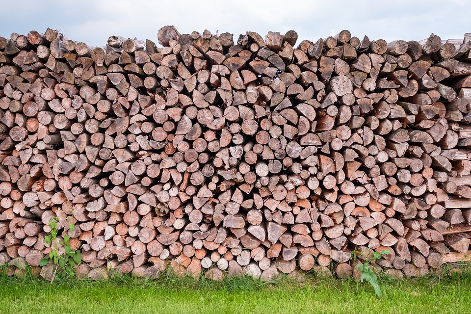 Pile Of Wood, Wood, Log, Tree Trunks, Firewood